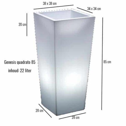 Genesis verlicht