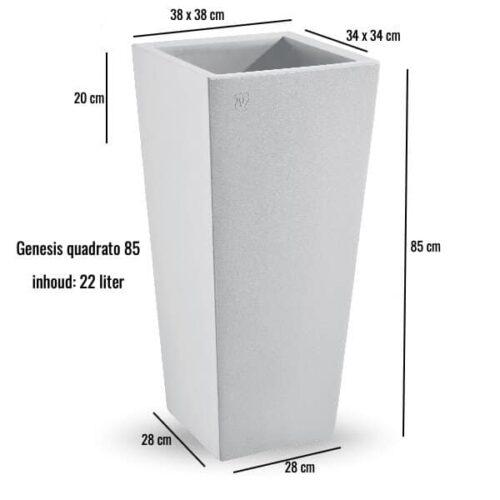 Genesis quadrato