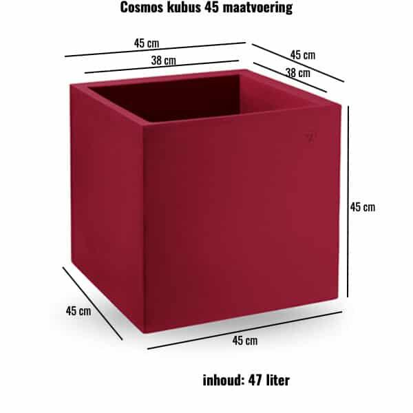 Cosmos kubus