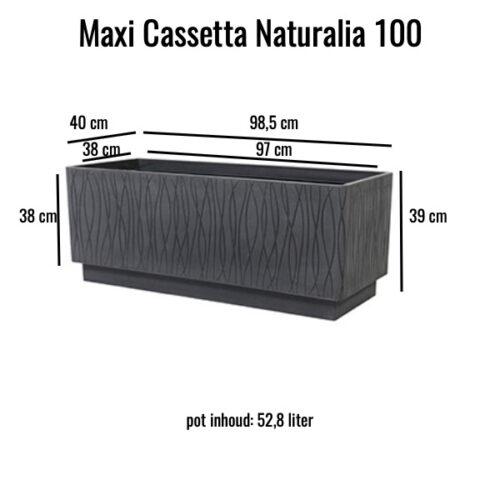 Maxi Cassetta Naturalia 100 Grigio Ardesia MV